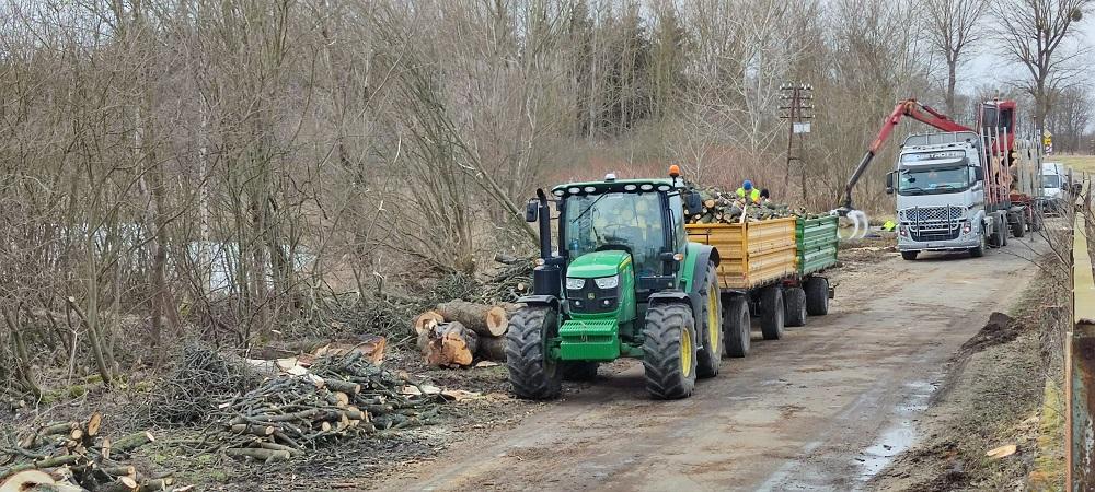 Przebudowę drogi do Gudowa rozpoczęto od wyniki drzew. Są kontrowersje. Przyrodnicy czują się oszukani