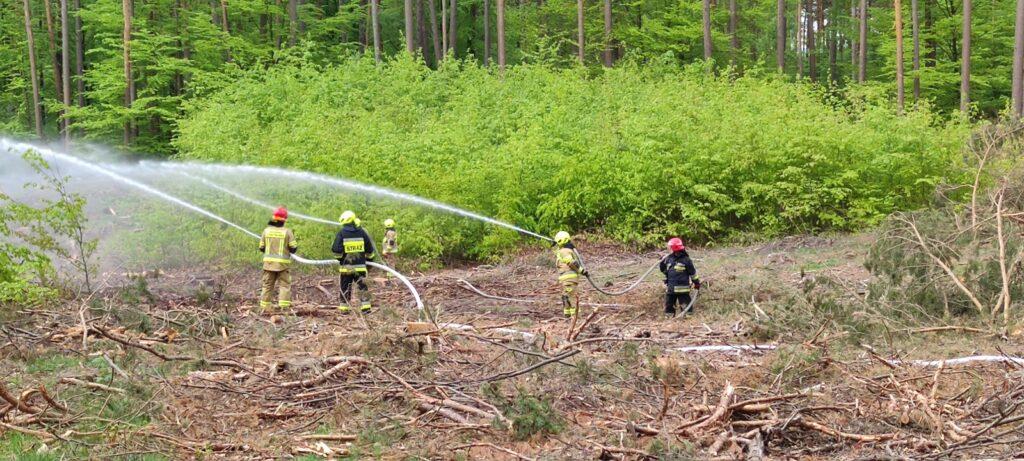 Służby sprawdziły swoją współprace w zakresie realizacji akcji poszukiwawczo ratunkowej rozbitków z samolotu [WIDEO]